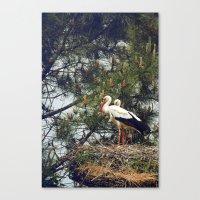 Silent Birds  Canvas Print