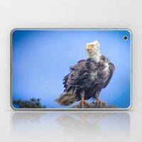 Eagle in Breeze Laptop & iPad Skin