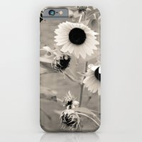 iPhone & iPod Case featuring Sunflowers. by Ashley Jensen