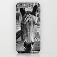 Waiting (Black and White Horse #1)  iPhone 6 Slim Case