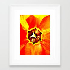 Orange Red Calyx Framed Art Print