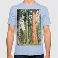 Giant Sequoia Mens Fitted Tee Tri-Blue SMALL