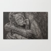 I Protect You Canvas Print