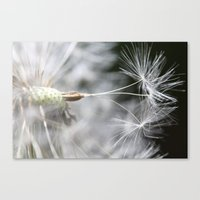 A Dream Is A Wish Your H… Canvas Print