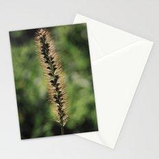 Fuzzy Stationery Cards