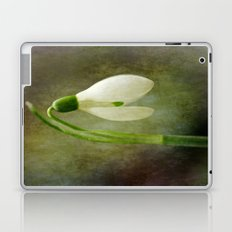 The productions of the earth Laptop & iPad Skin