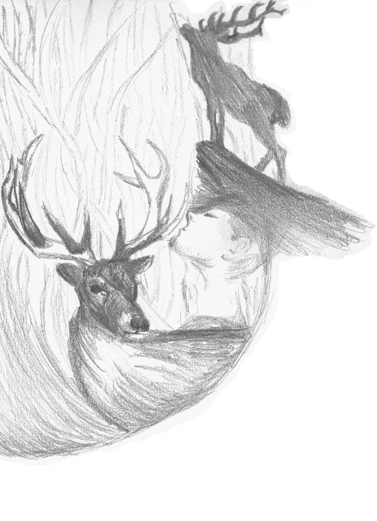 Stag and man Art Print