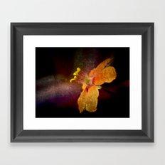 Dark Orange Framed Art Print