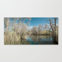 Pond Water Canvas Print