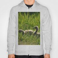 Goslings In The Grass Hoody