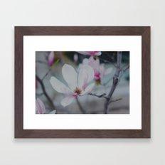 Sweet & Delicate Framed Art Print