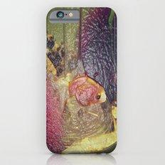 Fish iPhone 6 Slim Case