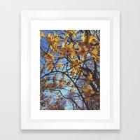 Spring Awakening II Framed Art Print