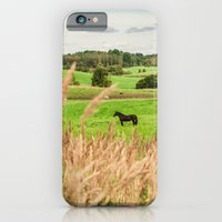 Black horse iPhone 6 Slim Case
