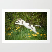 Cat, Bumble-bee And Dand… Art Print