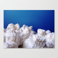 The Fluffy Mountains! Canvas Print