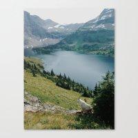 Mountain Goat At Hidden … Canvas Print