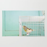 Finch Against Turquoise … Rug
