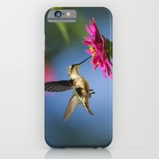 Hummingbird Flight iPhone 6 Slim Case