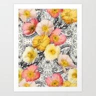 Collage Of Poppies And P… Art Print