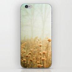 Daybreak in the Meadow iPhone & iPod Skin