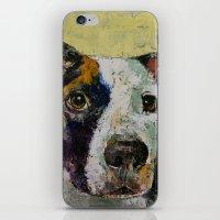Pit Bull iPhone & iPod Skin