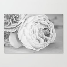 Early Roses - Black & White Canvas Print