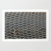 Hole In The Net Art Print