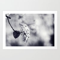 Blossoms In Black And Wh… Art Print