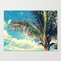 Breezy Beach Palm Canvas Print