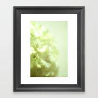 {delicate} Framed Art Print