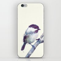 Bird // Trust iPhone & iPod Skin