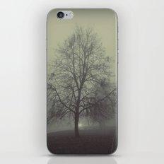 Mist iPhone & iPod Skin