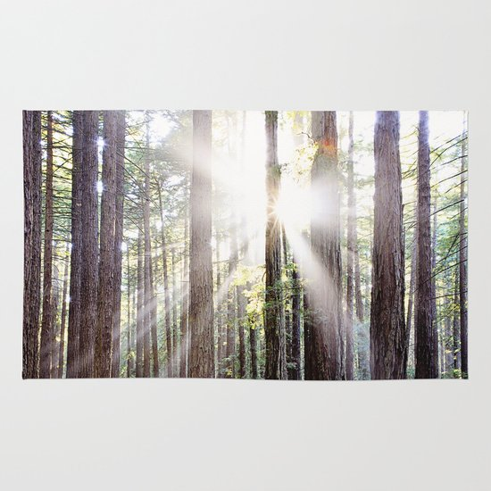 Sunburst Through the Redwoods Area & Throw Rug