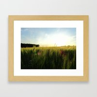 the field Framed Art Print