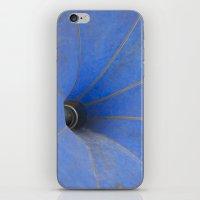 Phonograph iPhone & iPod Skin