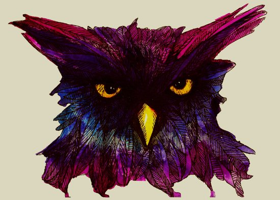 The Disapproving Owl... Art Print