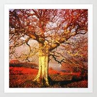 Forever Autumn Art Print