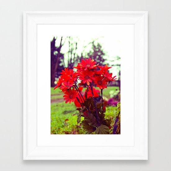 Simple red flowers Framed Art Print