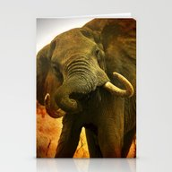 Mad Elephant Stationery Cards