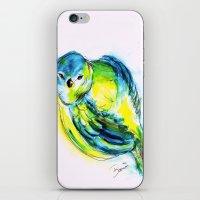 Little Birdy iPhone & iPod Skin