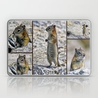 Chipmunk Collage Laptop & iPad Skin