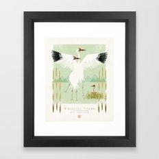 Whooping Crane Framed Art Print