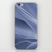 Blue Agave Attenuata iPhone & iPod Skin