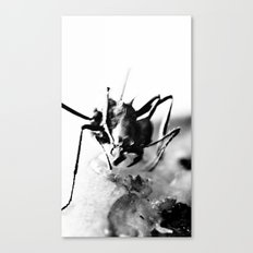 Atomic ant Canvas Print