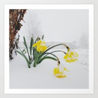 Spring Lost A Bet To Win… Art Print