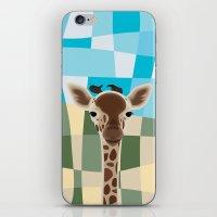 Wild Giraffe Baby on the grassland iPhone & iPod Skin