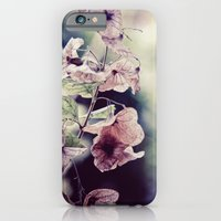iPhone & iPod Case featuring Feather by kbattlephotography