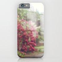iPhone & iPod Case featuring Rainy Window by catdossett