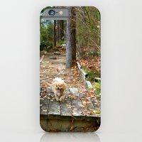Autumn Stroll iPhone 6 Slim Case